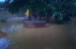 flooded_yard_07